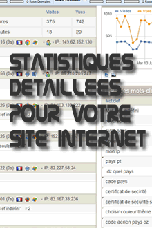 Statistiques dtailles pour votre site internet